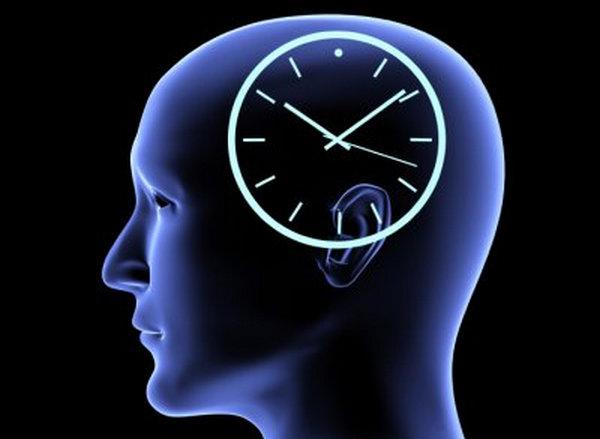 body's internal clock