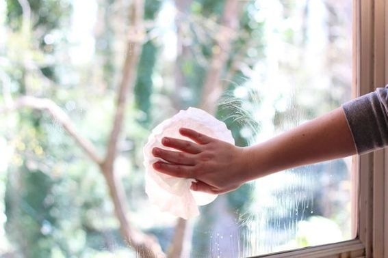 Coffee Filter Can Clean Glass