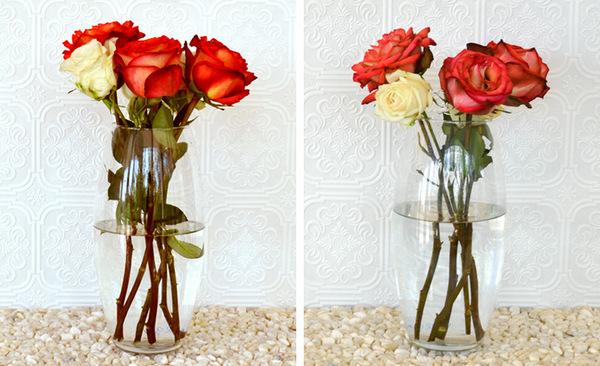 make flower last longer
