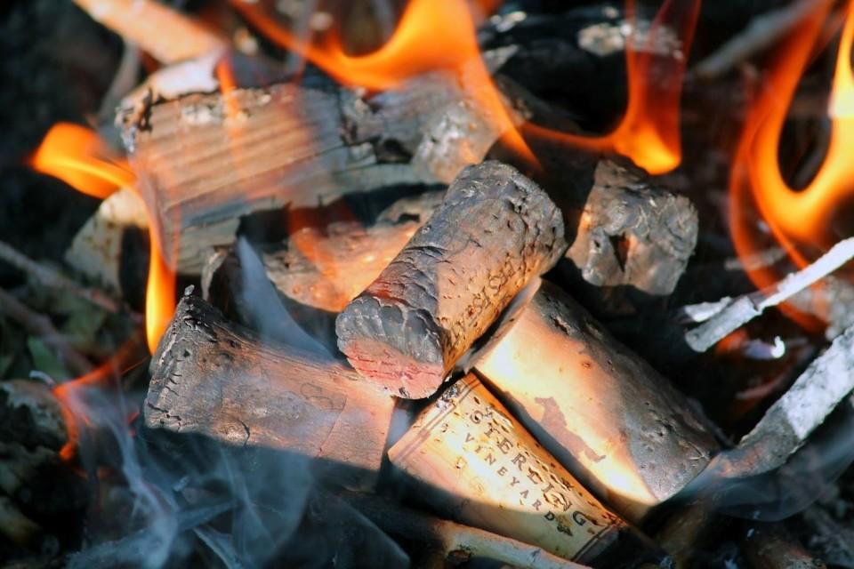 Wine Cork Fire Starter