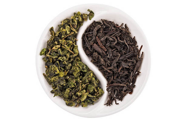 Differences Between Green Tea and Black Tea