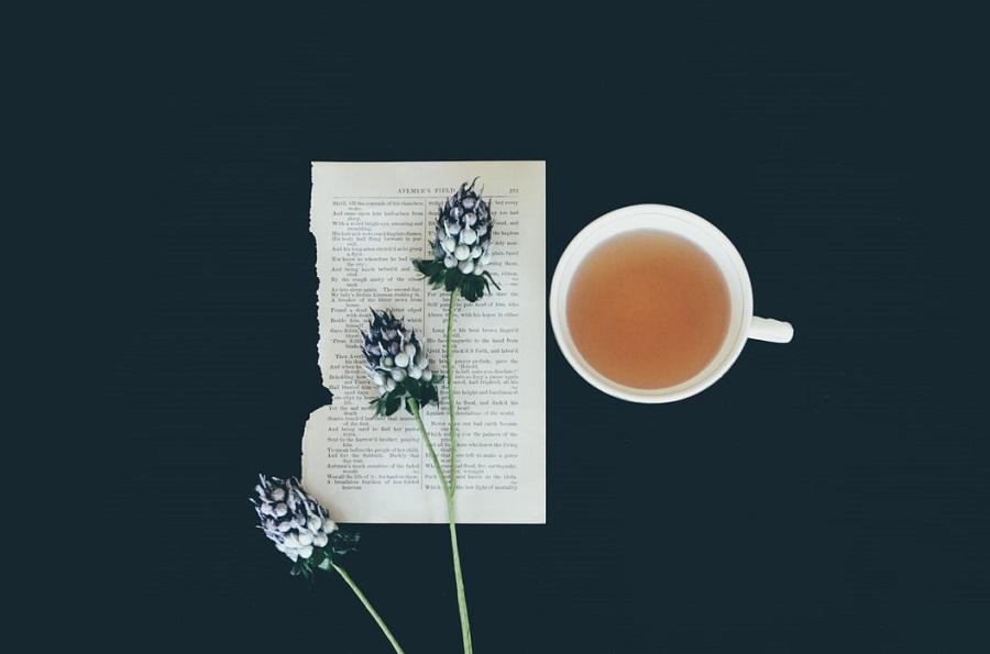 Is-There-a-Tea-Maker-like-a-Coffee-Maker-1