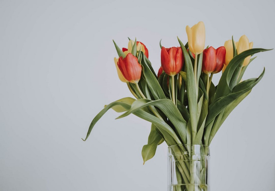 Tricks to Keep Your Flowers Fresh Longer1