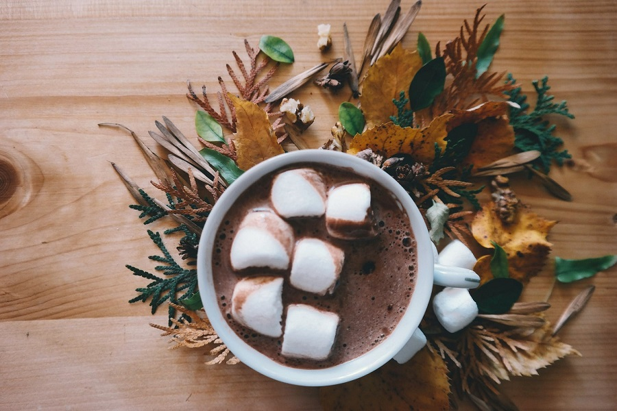 Difference between hot cocoa and hot chocolate-4